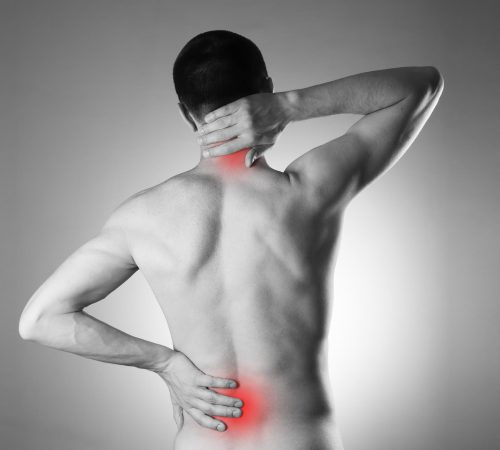 Back pain issues highlighted