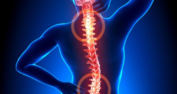 Back pain highlighted